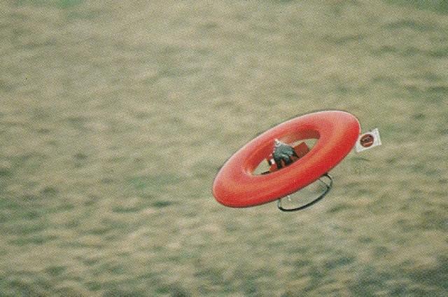 Bis zu 70 Stundenkilometer erreicht das 3,5 kg schwere Flugzeug im Geradeausflug. Leistung beim Vertikalstart: 15 Meter pro Sekunde.